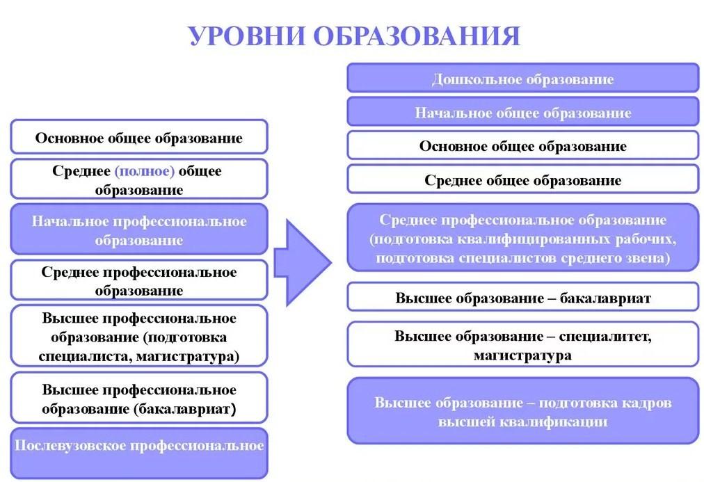 Виды образования в России: Начальное, Среднее, Высшее в чем разница?
