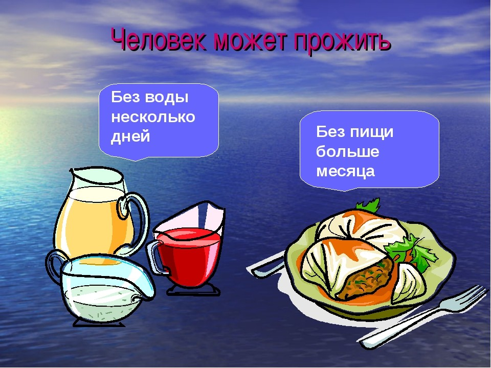 Долго ли человек может обходиться без еды?